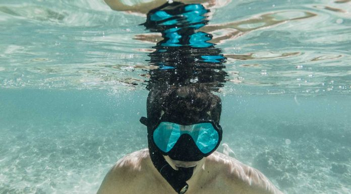 The-Things-You-Need-to-Know-About-Diving-Masks-on-dependableblog